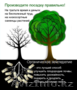 Садоводство, озеленение, удобрения